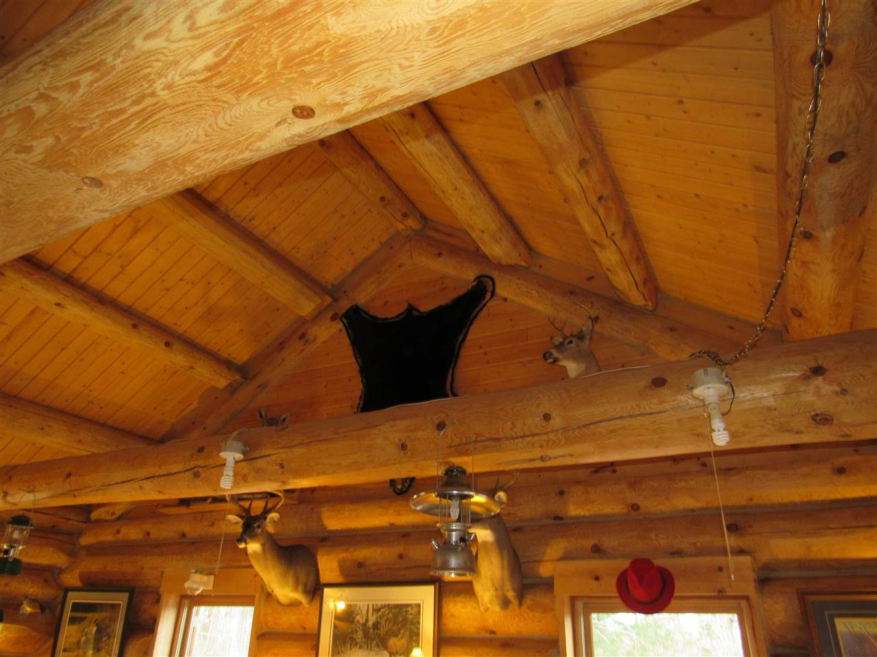 skanee single personals For sale: $229,000 - single family, 2 bed, 1 bath, 960 sqft at 24642 little huron in baraga log cabin on 120-acre wooded highland property in michigan's upper peninsula for sale.